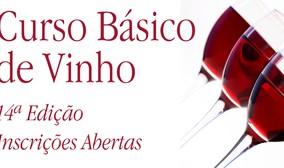 Introdução ao Mundo do Vinho